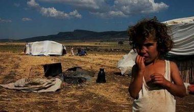 """Ey Ziya Selçuk: """"Neşeli Tatil""""i ve """"Eğitimde Fırsat Adaleti""""ni bir de bizden dinle bakalım!"""